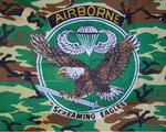 Airbourne Flag