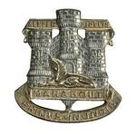 Devonshire and Dorset Cap badge
