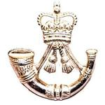The Rifles Regiemt Cap Badge