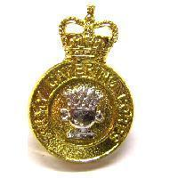 Pair Of Queens crown Catering corps Collar badges
