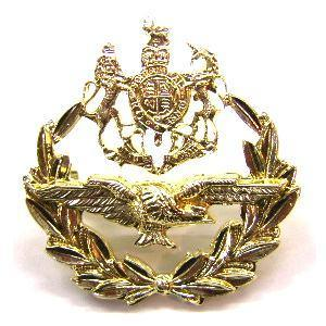 RAF Master Air crew Staybright Cap badge