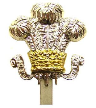 New Unissued Staybrite Cap Badge for the Royal Wiltshire Yeomanry