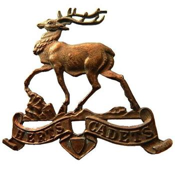 Herts Cadets Cap badge