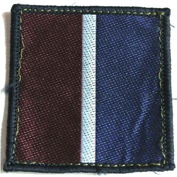 RAF Tactical recognition cloth sleeve badge